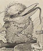 Mrs Kookaburra