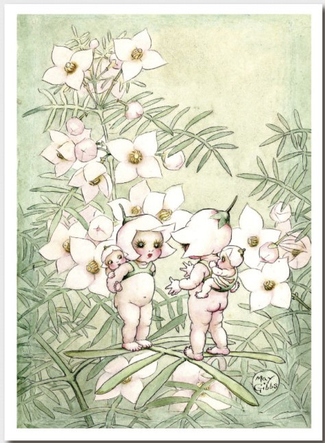 May Gibbs Gift Card - A Little Pale Pink Gossip