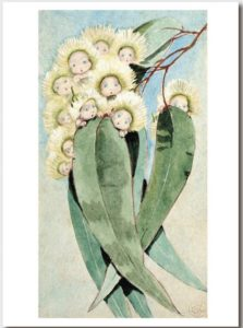 May Gibbs Gift Card Gum Blossom Babies