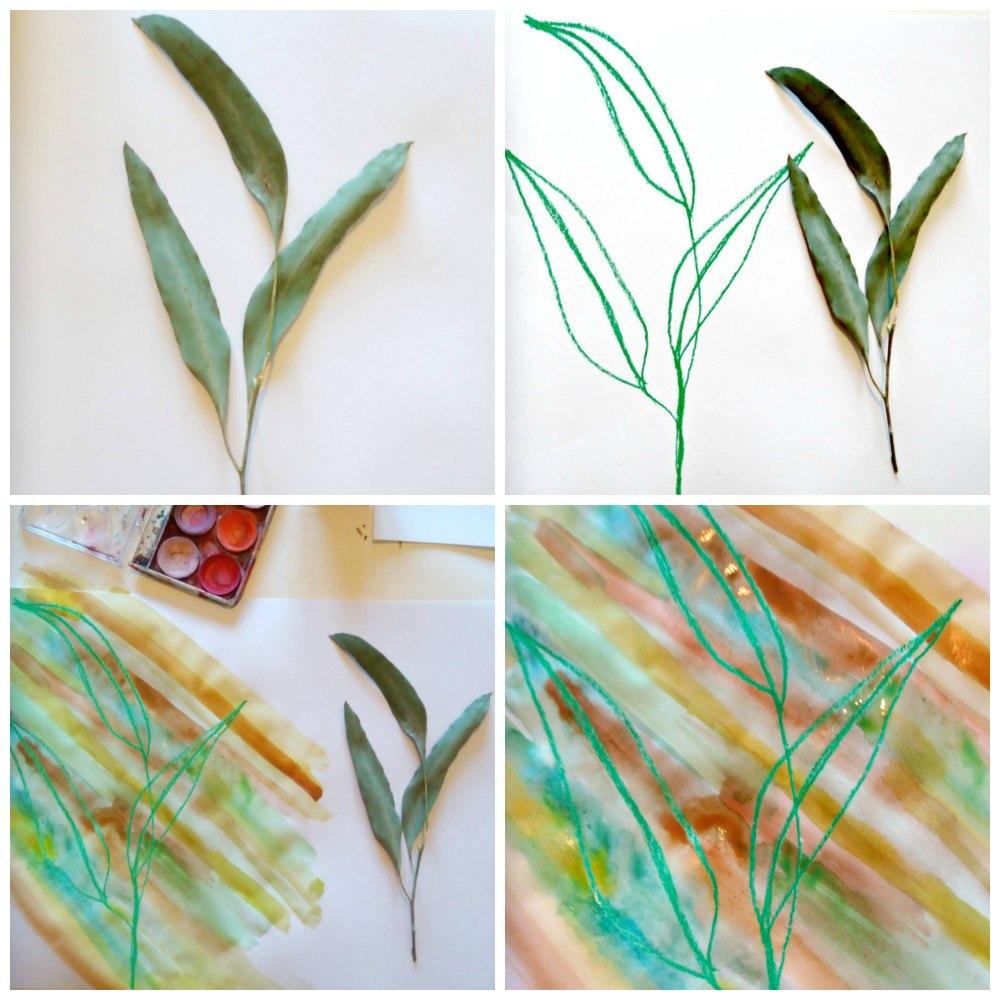 oil pastel craft australian bush leaf