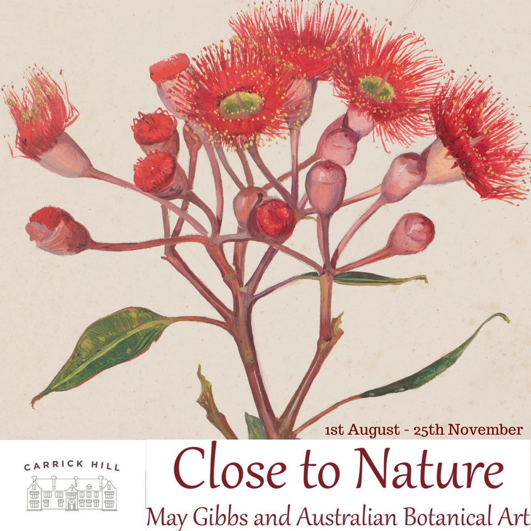 Close to Nature: May Gibbs and Australian Botanical Art