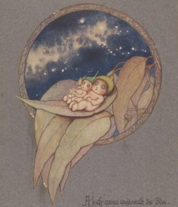 Star gazing Gumnut Babies