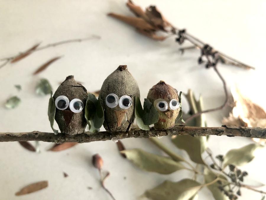 Gumnut Owls