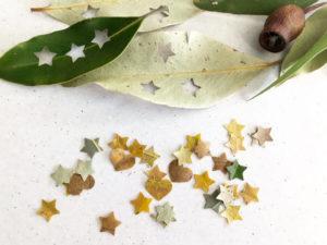 Nature confetti
